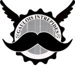 logo-gi-avec-les-ailes
