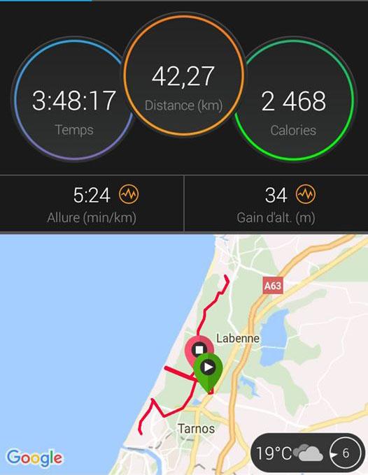 xavier marathon